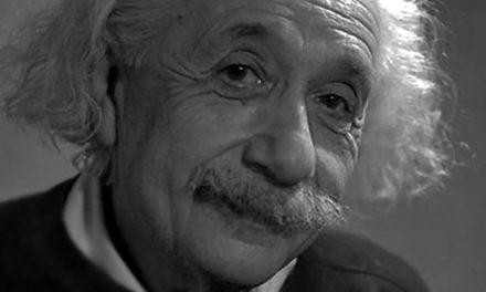 Hannah Arendt und Fred Stein – eine besondere Verbindung